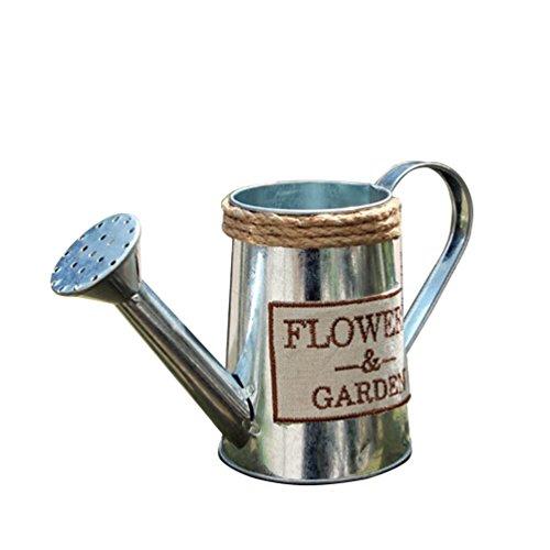 NACOLA Metal Flower Pot,Planter Watering Can with Jute Rope Vintga Garden Container,Outdoor Tin Bucket for Plants Garden Pots