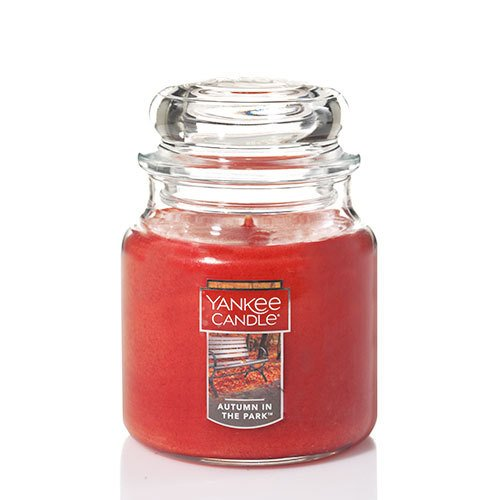Yankee Candle Medium Jar Candle, Autumn in the Park