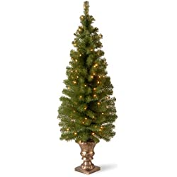 National Tree 5 Foot Montclair Spruce Entrance Tree with 100 Clear Lights in Gold Urn (MC7-308-50)