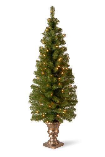 National Tree 5 Foot Montclair Spruce Entrance Tree with 100 Clear Lights in Gold Urn - Topiary Christmas