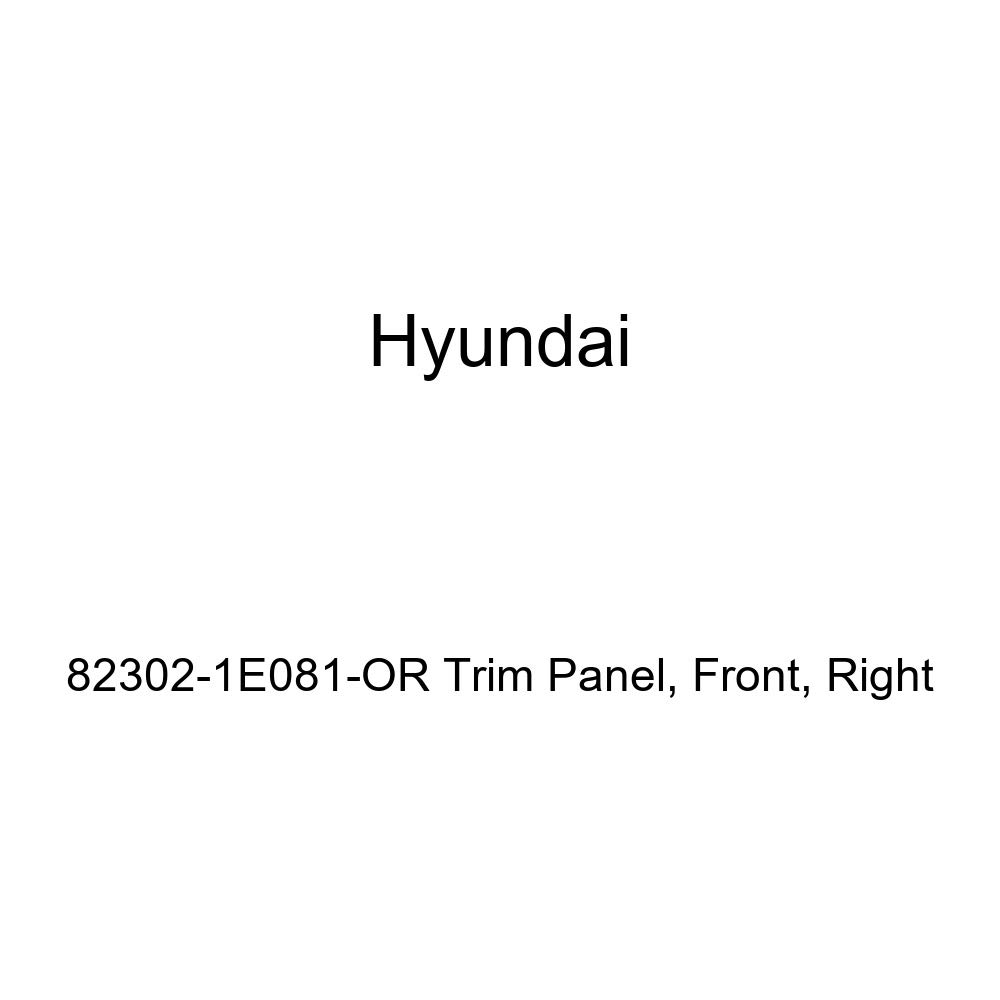 Genuine Hyundai 82302-1E081-OR Trim Panel Right Front