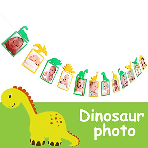 Birthday Banners With Photo Personalized (Dinosaur Photo Banner Baby First Birthday Party Decorations Dinosaur Theme Decoration Baby Shower Supplies Personalized Diy 12 Month Growth Record Picture Banner for Kids Cute Photo)