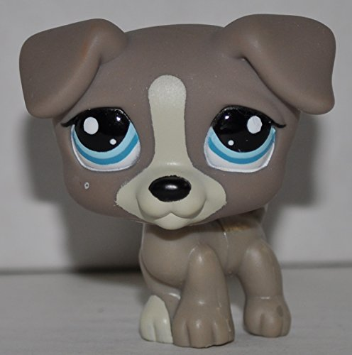 Jack Russell #1832 (Gray) - Littlest Pet Shop (Retired) Collector Toy - LPS Collectible Replacement Single Figure - Loose (OOP Out of Package & -