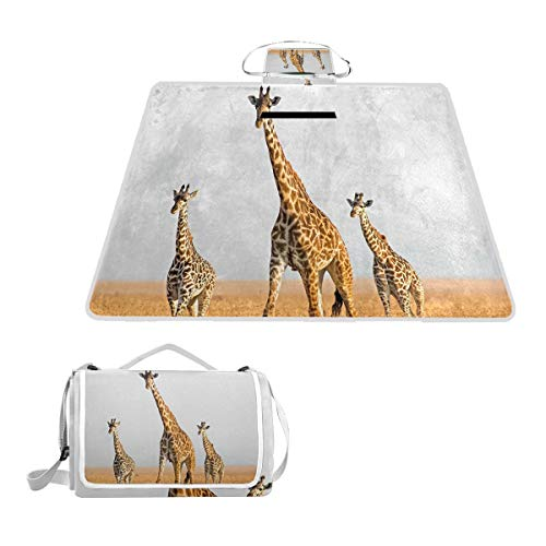 Giraffe Genome Reveals Clues to Sky Picnic Blanket Outdoor Picnic Blanket Tote Water-Resistant Backing Handy Camping Beach Hiking Mat 57