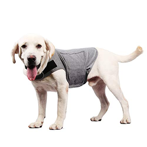 Royal Wise Dog Anxiety Coat Anti-Anxiety Vest Shirt Stress Relief Keep Calm Clothes