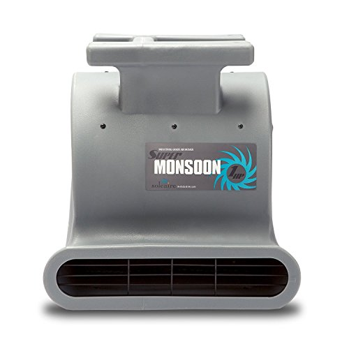 Soleaire Super Monsoon SA-SM-1HP-GY Air Mover Blower Fan Carpet Dryers for Professional Carpet Cleaner Janitoral Floor Dryer Services 1 HP CE Certified Water Damage Flood Restoration Equipment, Gray ()