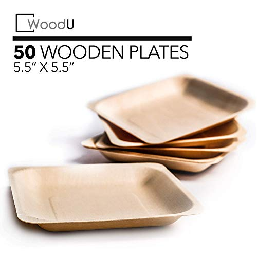 Disposable Plates All Natural Biodegradable Birch Wood for Parties, Events (5.5