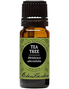 Tea Tree (Melaleuca) 100% Pure Therapeutic Grade Essential...