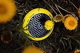 ROOT INDUSTRIES 120mm Honeycore Wheels - Radiant