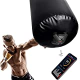 UFC Combat Force Tracker, Boxing Punch