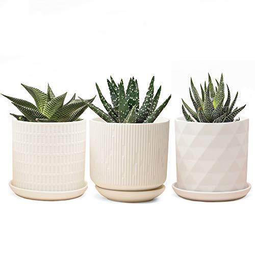 Chive – Set of 3 Virago 3 Inch Round Succulent Pot, Planter with Drainage Whole and Saucer, Bulk 3 pack Tray and Dish White