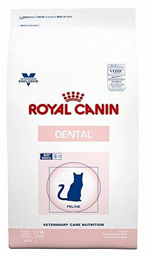 ROYAL CANIN Feline Dental Dry (7.7 lb)