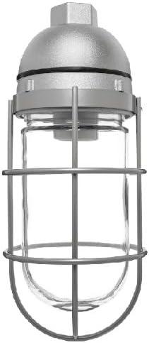 RAB Lighting VAPORPROOF 100 PENDANT 1 2 WITH GLASS GLOBE WIRE GUARD