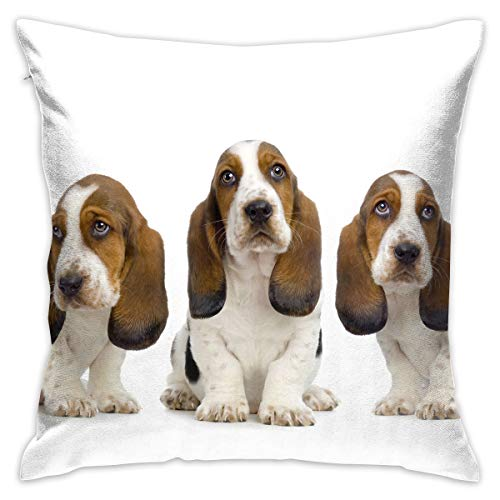 Everything You Wanted to Know About Basset Hound Throw Pillow Cases Square Flax Cushion Cover for Sofa Decorative Office Chairs Home Decorative 18x18 Pillowcase
