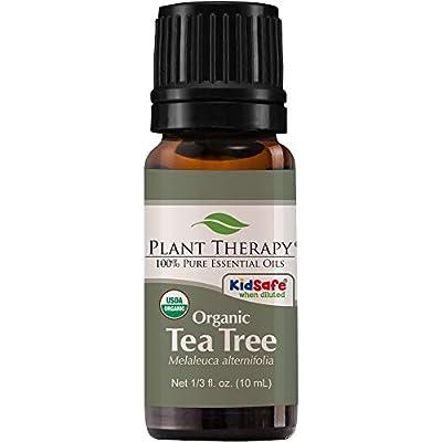 Plant Therapy Tea Tree Oil Organic (Melaleuca Essential Oil) | 100% Pure, Natural, Therapeutic Grade