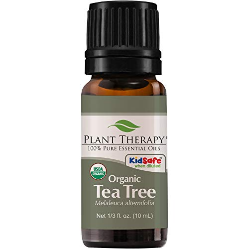 Plant Therapy Tea Tree Organic Essential Oil | 100% Pure, USDA Certified Organic, Undiluted, Therapeutic Grade | 10 milliliter (⅓ ounce)