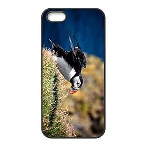Unique Bird Hight Quality Plastic Case for Iphone 5s