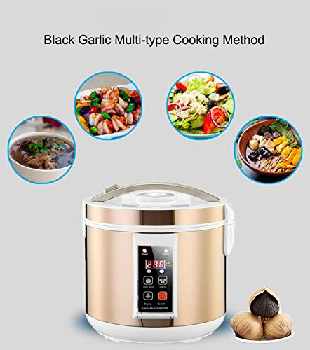 Black Garlic Fermenter, HomeYoo Black Garlic Ferment Box, Smart Fermentation Machine, Full Automatic Intelligent Control Garlics Maker Multiple Clove Garlic DIY Cooker, Home/Kitchen Utensil (Golden) by HomeYoo (Image #1)