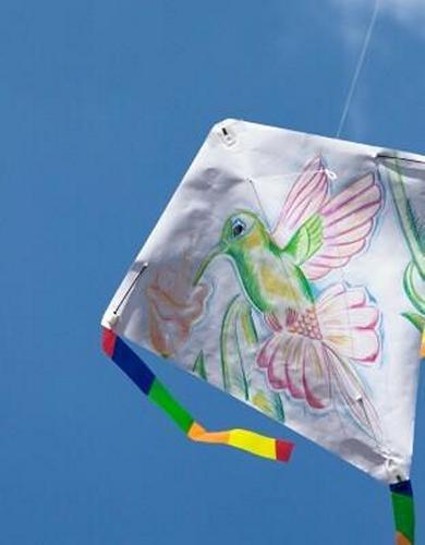 HQ Kites Creative Line: Eddy Kid's Creation by HQ Kites and Designs