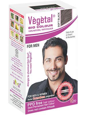 Vegetal Bio Colour - black Beard Hair colour for men 25g. (pack of 3)