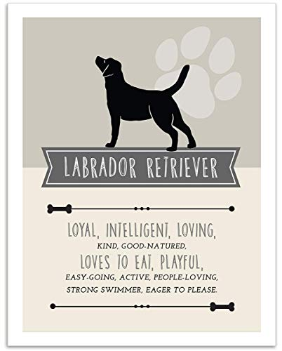 Black Labrador Retriever Dog Wall Art - 11x14 Unframed Decor Print - Makes a Great Gift Under $15 for Dog & Pet Animal Lovers