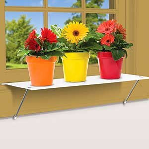 Amazon Window Plant Shelf Kitchen Dining