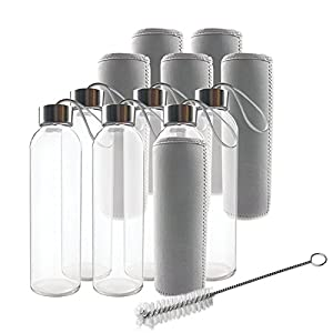 Teikis (6-Pack) Glass Water Bottles 18oz with Stainless Steel Cap, Brush and 6 Nylon Protection Sleeve