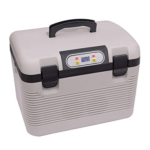 - Portable Electric Cooler Fridge Car Cooling and Warming Mini Fridge 19L Thermoelectric System with AC/DC Adapter for Travel, Picnic, Camping, Home and Office Use for Travel, Picnic, Camping, Home and