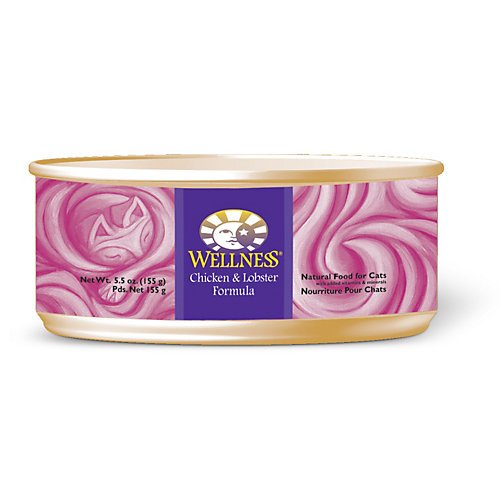 Wellness-Complete-Health-Natural-Canned-Grain-Free-Wet-Pate-Cat-Food