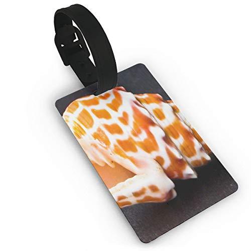 Luggage Tags Exotic Shells Hawaii Sea-shells Travel Name Tag Holder Labels ()
