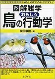 鳥のおもしろ行動学 (図解雑学)