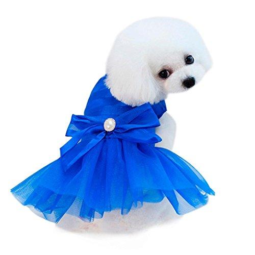 Wakeu Small Dog Girl Dress Pet Puppy Lace Tutu Stripe Vest Shirt Clothes (XS, Blue)
