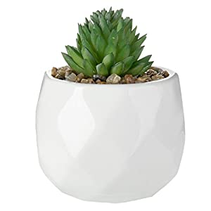MyGift Assorted Realistic Succulent Plants in Modern Geometric Ceramic Pots, Set of 4 6