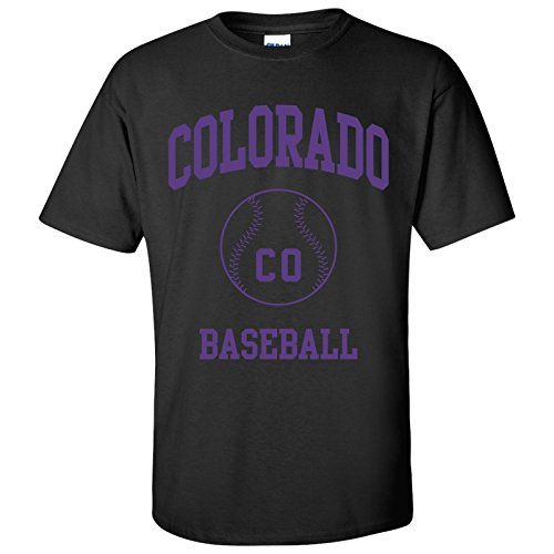 Colorado Classic Baseball Arch - Stadium, Jersey Team Sports, Batter, Pitcher T-Shirt - Large - (Arch Jersey)