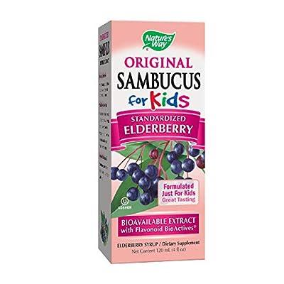 Nature's Way Sambucus Elderberry Syrup for Kids, Herbal Supplements, Gluten Free, Vegetarian