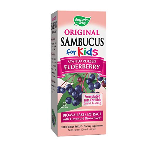 Nature's Way Sambucus Elderberry Syrup for Kids, Herbal Supplements, Gluten Free, Vegetarian, 4 Ounce (Packaging May Vary)