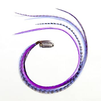 Amazon.com : Quill Clip Feather Hair Extension