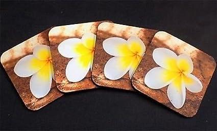 Amazon Com Frangipani 2 Tropical Hawaii Plumeria Flowers Bar 4