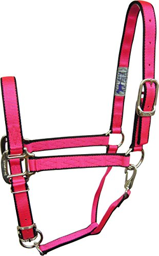 Quality Foal Halter with Snap for 100-200 lb Mini Horse, 3/4, Neon Pink with Black Trim (Pink Trim Snap)