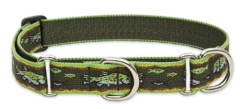 "LupinePet Originals 1"" Brook Trout 19-27"" Martingale Collar for Large Dogs"