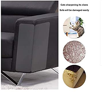 Daxoon Protectores de Muebles de Mascotas, Protector de sofá para Gato, para Evitar arañazos (13,5 x 4,5 Pulgadas): Amazon.es: Informática