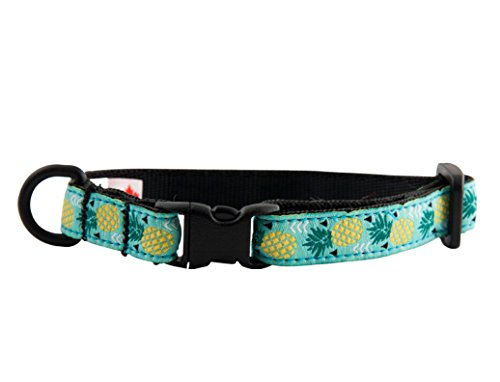 with Cat Collars design