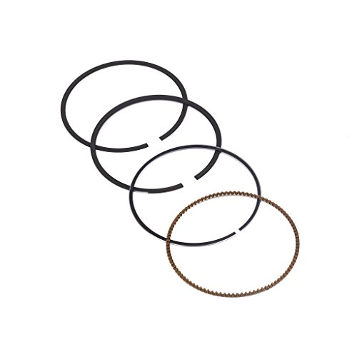 Briggs & Stratton 792026 Ring Set Replaces 793561 ()