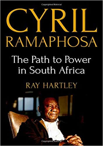 Power - A South African political novel