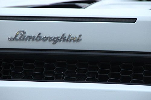 Gifts Delight LAMINATED 36x24 inches POSTER: Lamborghini Emb