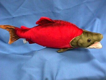 West End Sockeye Salmon Cabin Critter ()