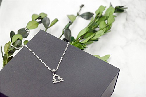 Sahaa 925 Sterling Silver Zodiac Sign Necklace Horoscope Constellation Pendant Astrology Charm Necklace Birthday Gift (Libra)