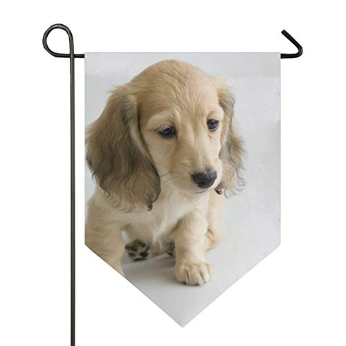 MONTOJ Adroable Puppy Home Sweet Home Garden Flag Vertical Double Sided Yard Outdoor Decorative