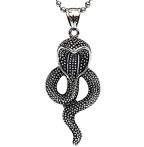 [Epinki Stainless Steel Pendant Necklace, Mens Vintage Punk Rock Silver Black Cobra Snake Necklace] (Cobra Staff Costumes Accessory)
