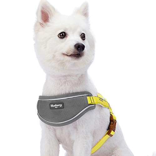 Blueberry Pet 5 Colors Soft & Comfy 3M Reflective Strips Padded Dog Harness Vest, Chest Girth 20.5 - 25.5, Sunshine Yellow, S/M, Nylon Adjustable Training Harnesses for Dogs